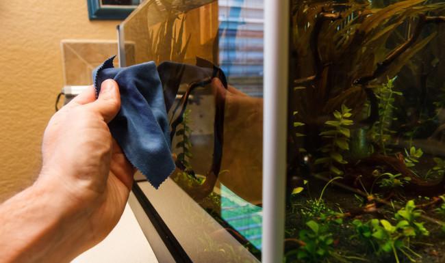 Протирка стекол аквариума