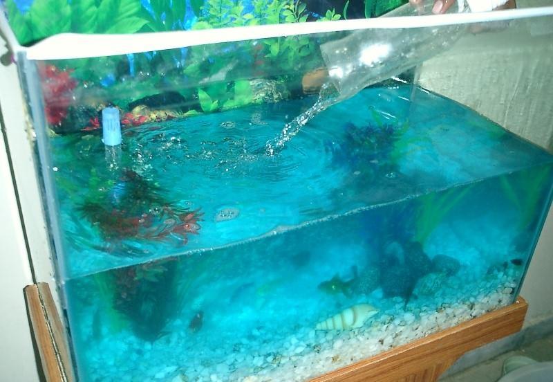 Доливка воды в аквариум